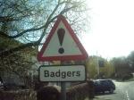 Badgerz