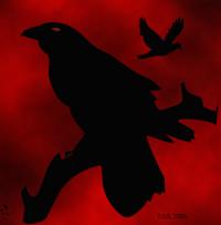 Cuervoso