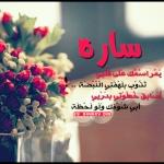 القسم الاسلامي العام 28-13