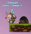 chibikatt