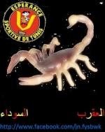 hacker tunisien