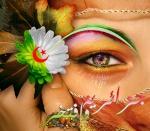 فراشة جزائرية