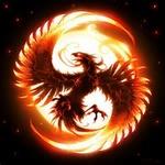 Phoenix 101