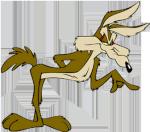 Vil Coyote