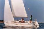 Le site Virtual Ocean Races (VOR) 37-59