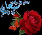 Muslimah16