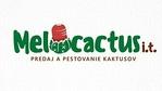 Melocactus i.t.