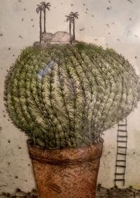 Cactusfreundbs