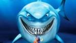 SHARK aka TAH