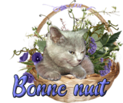 Laurette/ Andréa  453753106