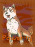 Powertty