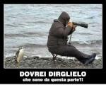 danigeo