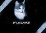 evil meowkid
