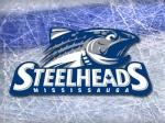 Steelhead77