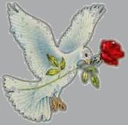 دستور (ايمان بكرى) 57983