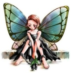 الفراشه