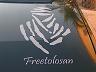 freetolosan