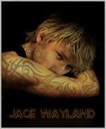 Juls wayland