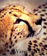 Werecheetah
