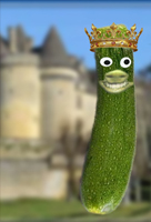 courgette_1er