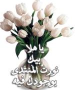 :نورت المنتدى: