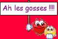 gosses