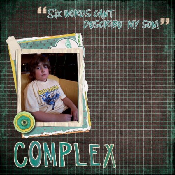 Sarah's Six Word Memoir challenge Comple11_800x600