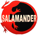 salamander13