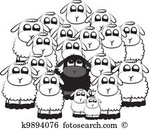 petit-mouton-noir