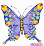 Butterfly Jak