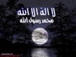 رياض محمد المشايخ