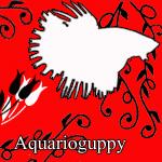 aquarioguppy