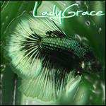 LadyGrace
