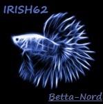 Irishboy