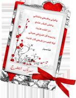 amira_rouad