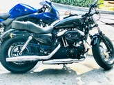 Le SPORTSTER 12777-64