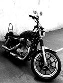 Le SPORTSTER 9550-58