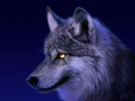 Wolfury