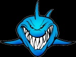 Sharkky