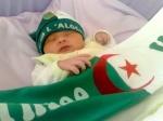 نبع الجزائر