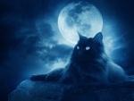 Лунная долька