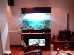 Présentations et Discussions sur vos fish-rooms 668-21