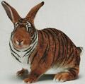 Babz Bunny