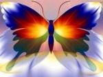 sareni leptir