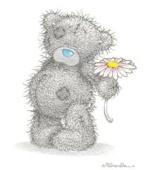 yokky bear