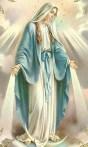 Les saints de tous les temps 8-40