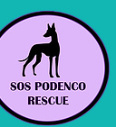 SOS PODENCO RESCUE