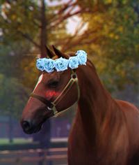 Equestrian Sims 2742-35