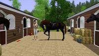 Equestrian Sims 2826-15