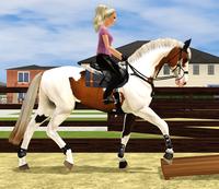 Equestrian Sims 5322-41
